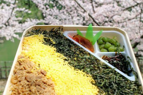 【画像】駅弁と言うと大館の鶏めしと九州のかしわ飯だよな!?