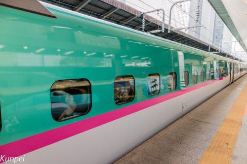 北海道への鉄道旅 北海道新幹線~スーパー北斗 と美味しい駅弁