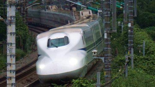 あの「ホテイのやきとり」が駅弁に!~静岡駅「やきとり弁当」(950円)