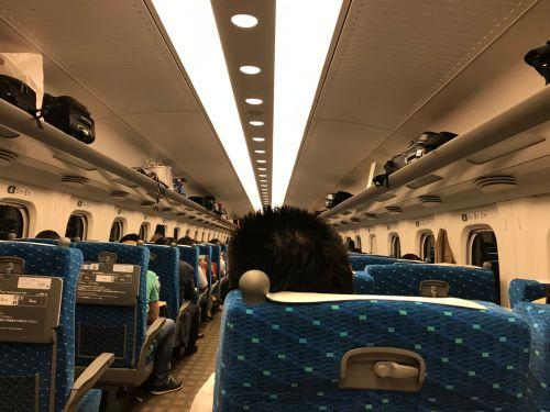 旅の羅針盤:JR名古屋駅とJR東京駅で購入出来る駅弁47-こだわりのみそ唐揚げ弁当-